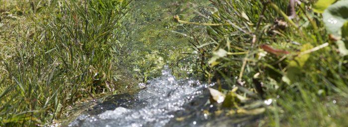 Tounet - Nettoyage Professionnel et Industriel en Alsace